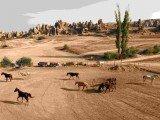 An Economic Journey to Cappadocia
